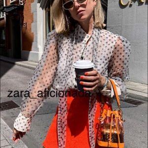 Zara Organza Polka Dot Bow Blouse 4437/051
